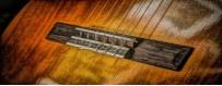 Guitarras Flamencas
